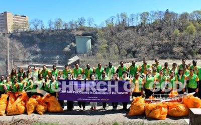 Lower Falls Cleanup
